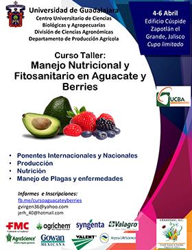Cartel informativo sobre el Curso taller: Manejo nutricional y fitosanitario en aguacate y berries, Del 4 al 6 de abril, en el  Edificio Cúspide, Zapotlán El Grande, Jalisco