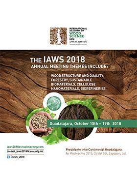 Cartel informativo sobre THE IAWS 2018, Del 15 al 19 de octubre en el Hotel Presidente Intercontinental