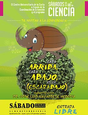 Cartel en fondo verde con un dibujo de un escarabajo