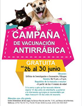 Cartel con texto informativo de la campaña gratuita de esterilización para perros y gatos que se llevará a cabo del 26 al 30 de junio en el edificio de investigación e innovación de CULagos de 9:00 a.m. a 3:00 p.m. y se indican los requisitos para poder vacunar a la mascota y telefonos para hacer previa cita.