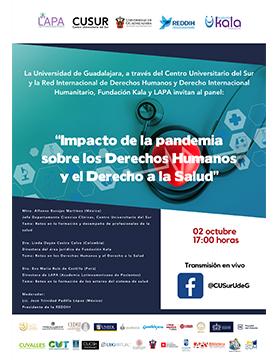 Panel: Impacto de la pandemia sobre los derechos humanos y el derecho a la salud