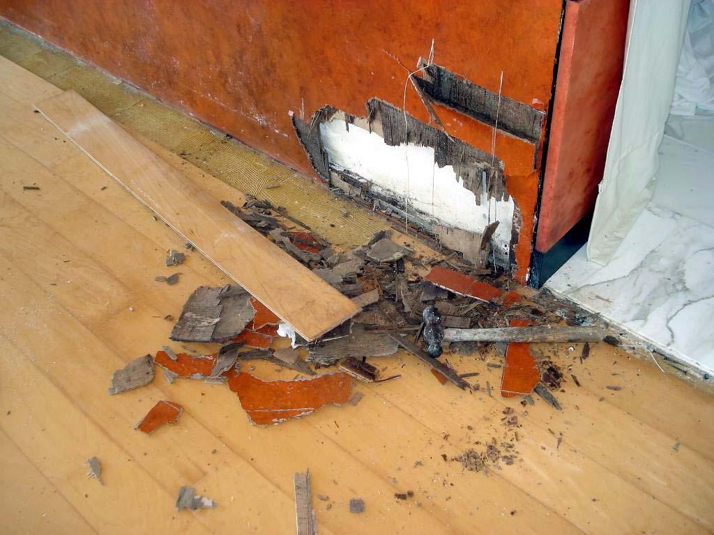 Madera afectada por termitas