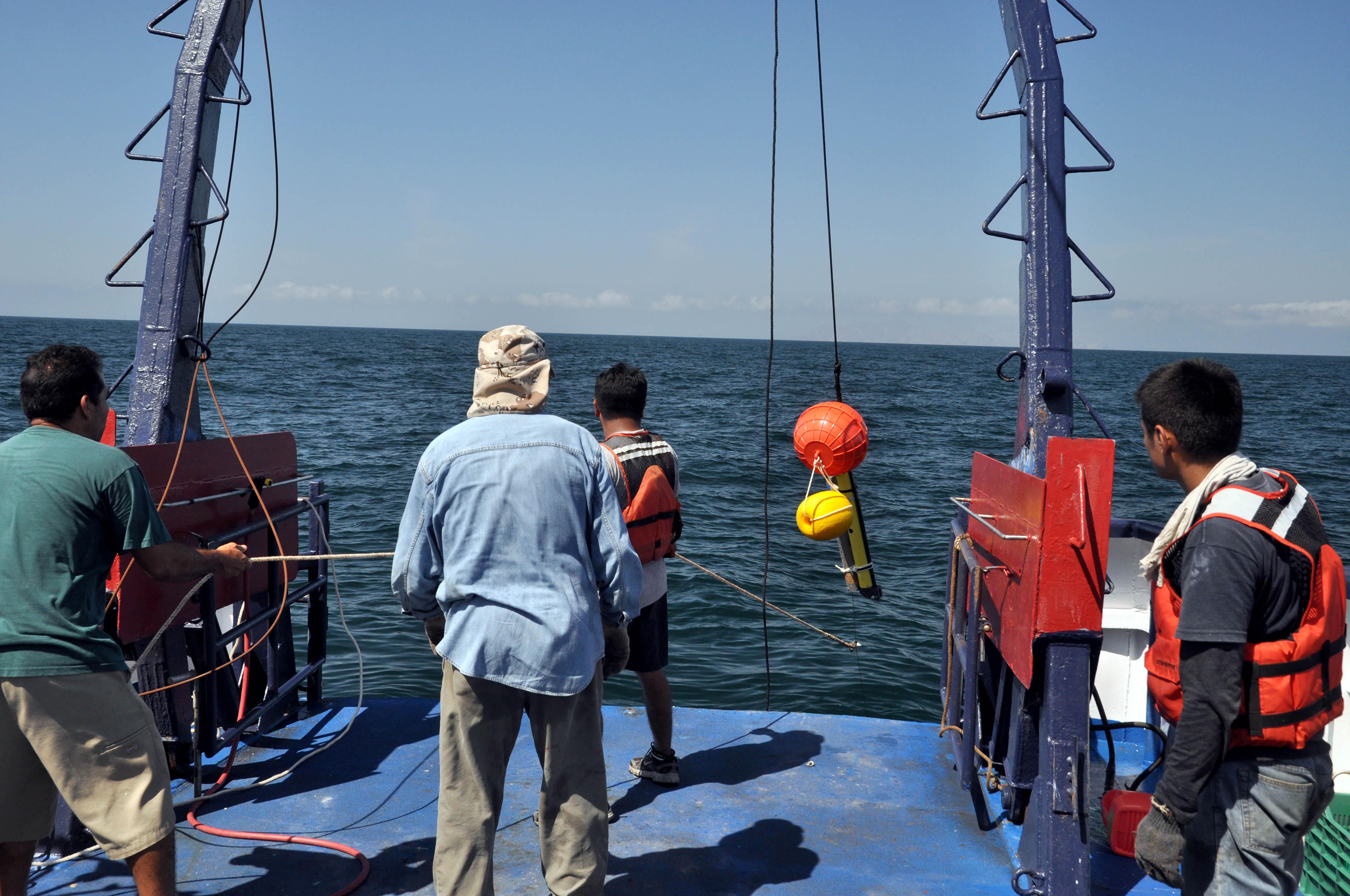 Personas realizando trabajos de investigación en el oceano