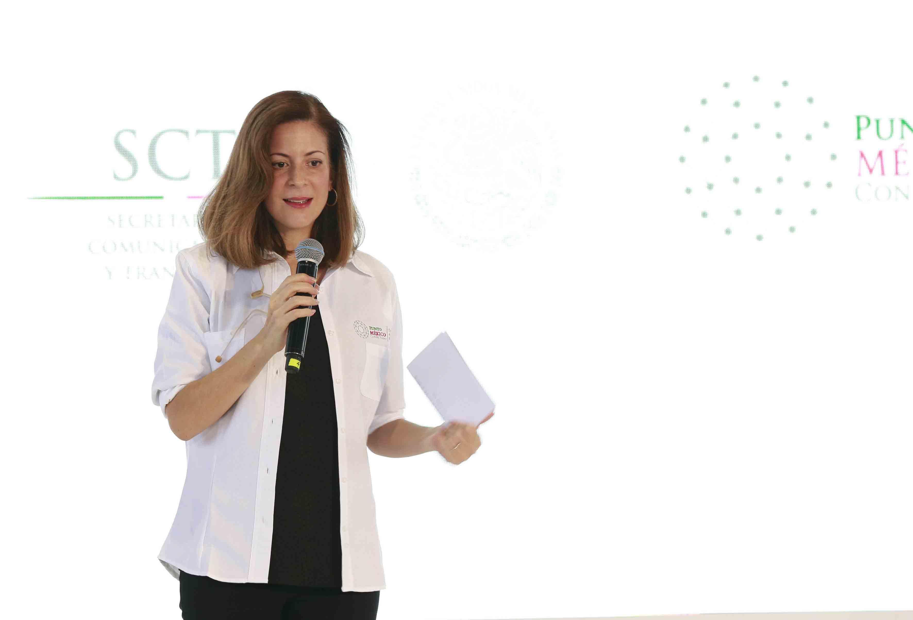Subsecretaría de Comunicaciones y Transportes, Mónica Aspe Bernal