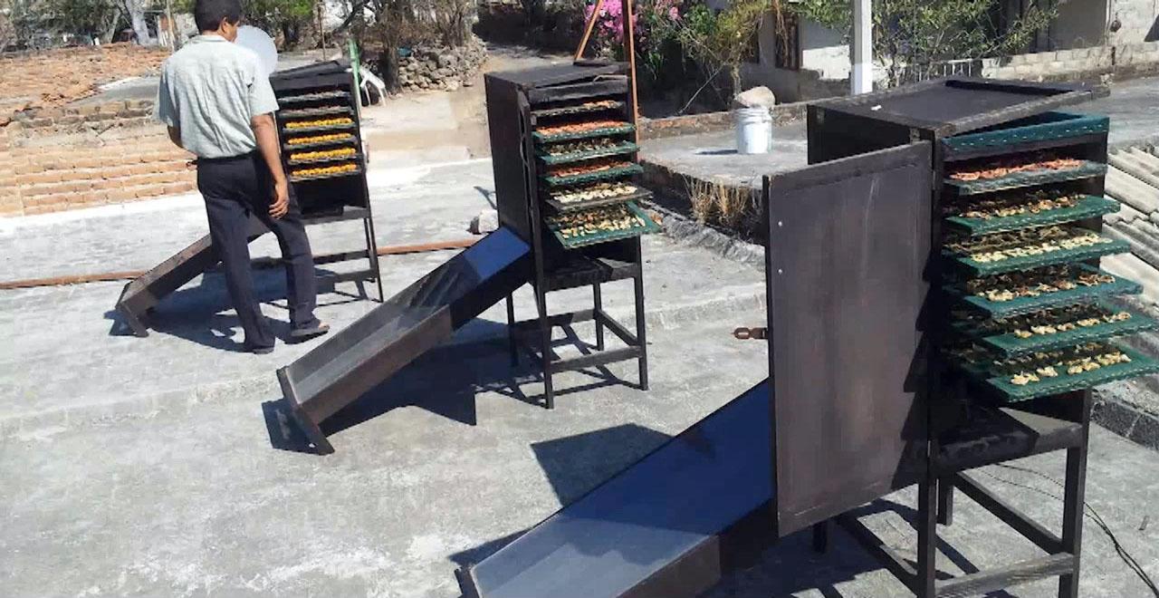 Deshidratador Solar de Alimentos (Desali)