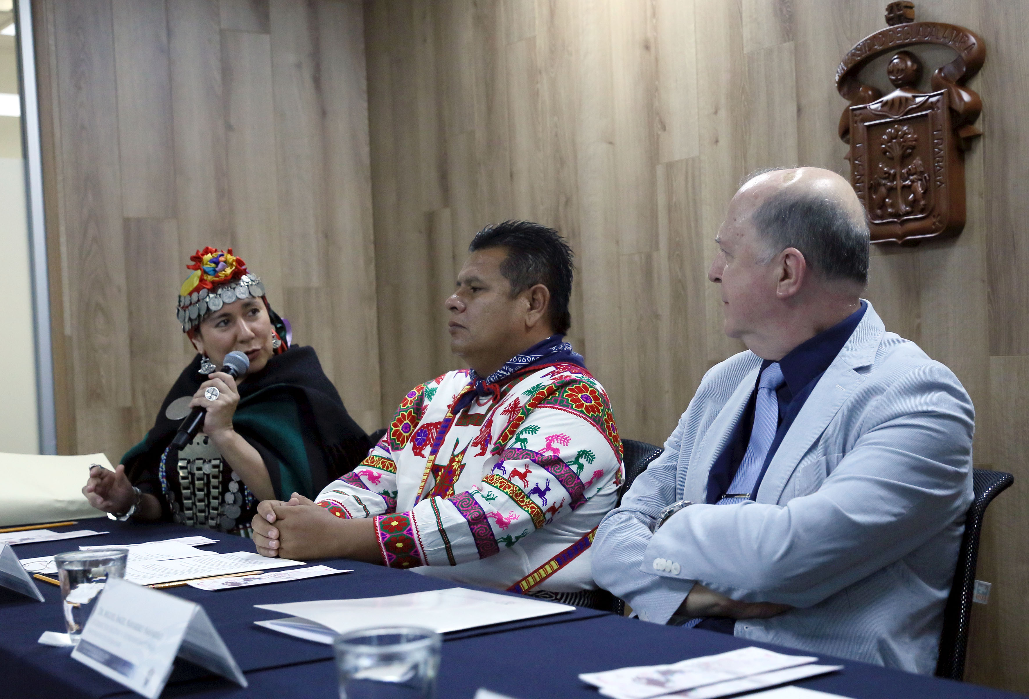 Maestra Libertad Manque, Poetisa chilena de origen mapuche, participando en conferencia de prensa
