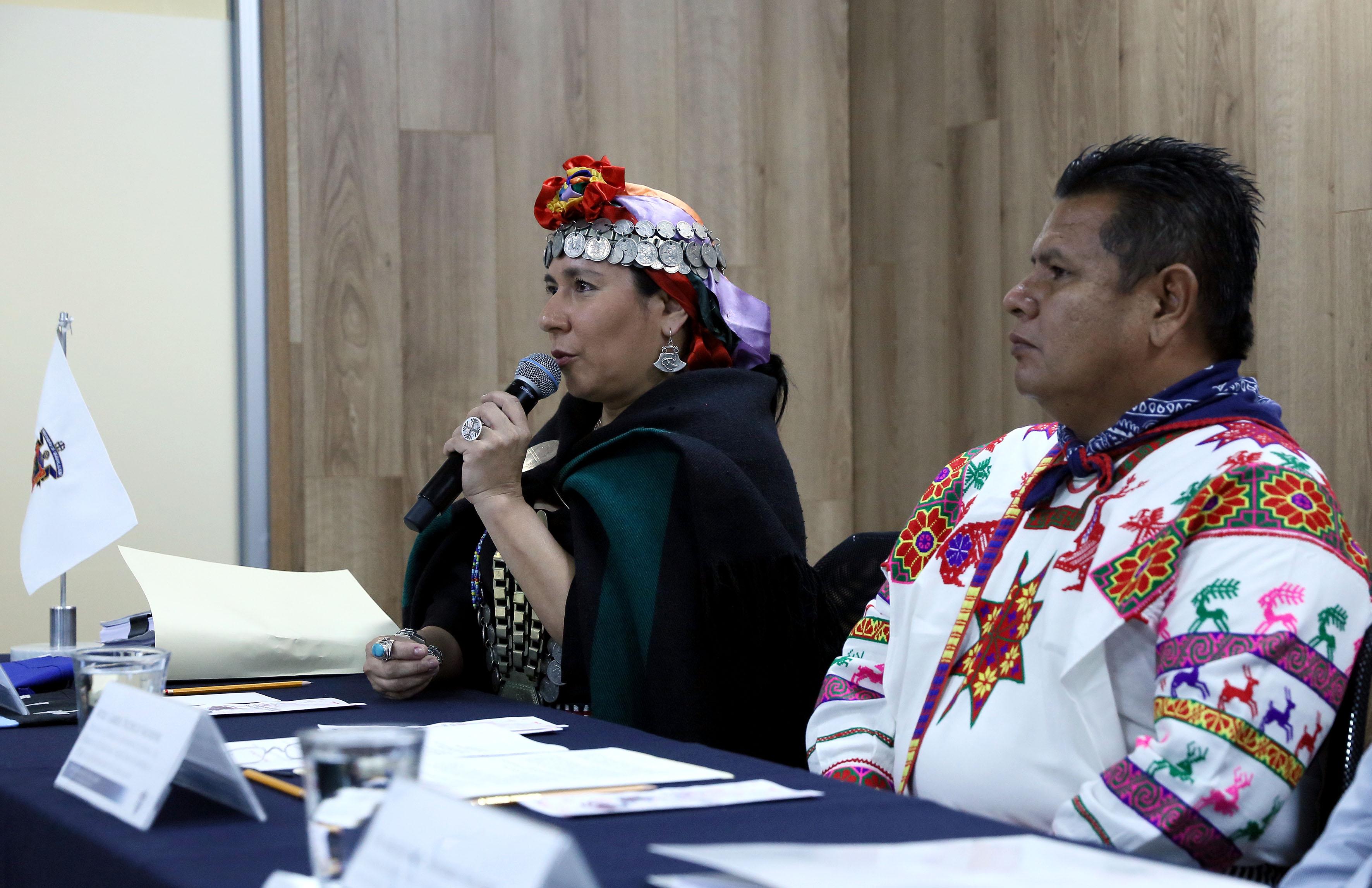 Maestra Libertad Manque, Poetisa chilena de origen mapuche, frente al micrófono