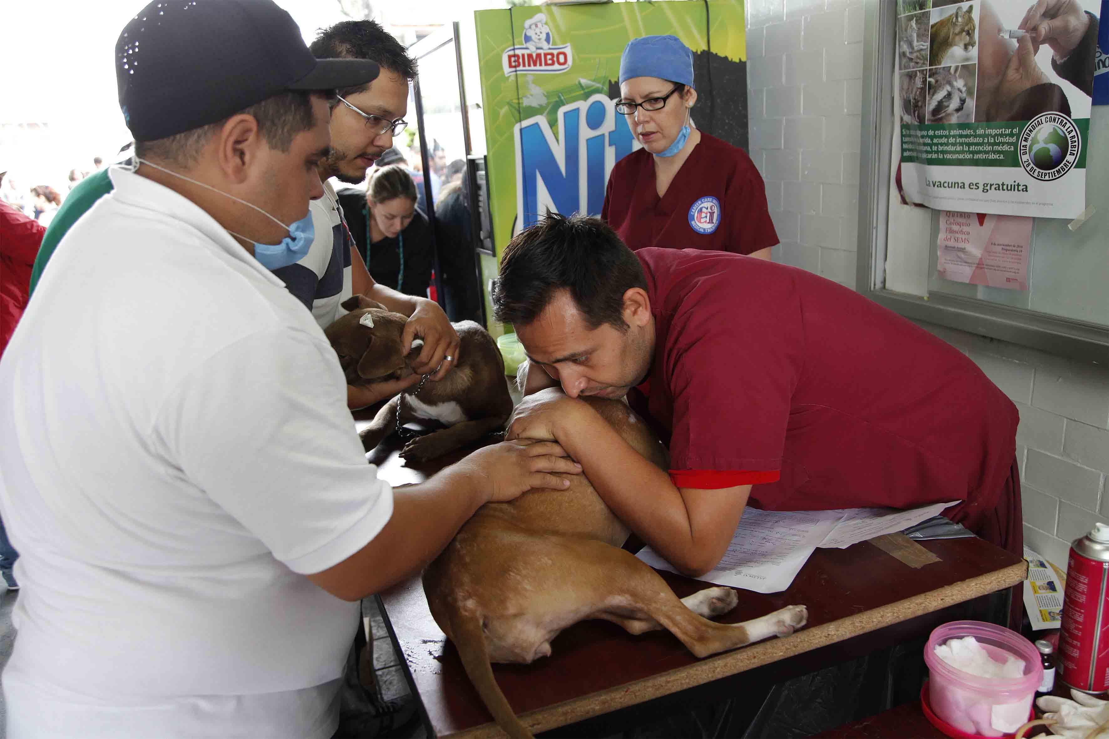 víctimas de esterilización en mexico