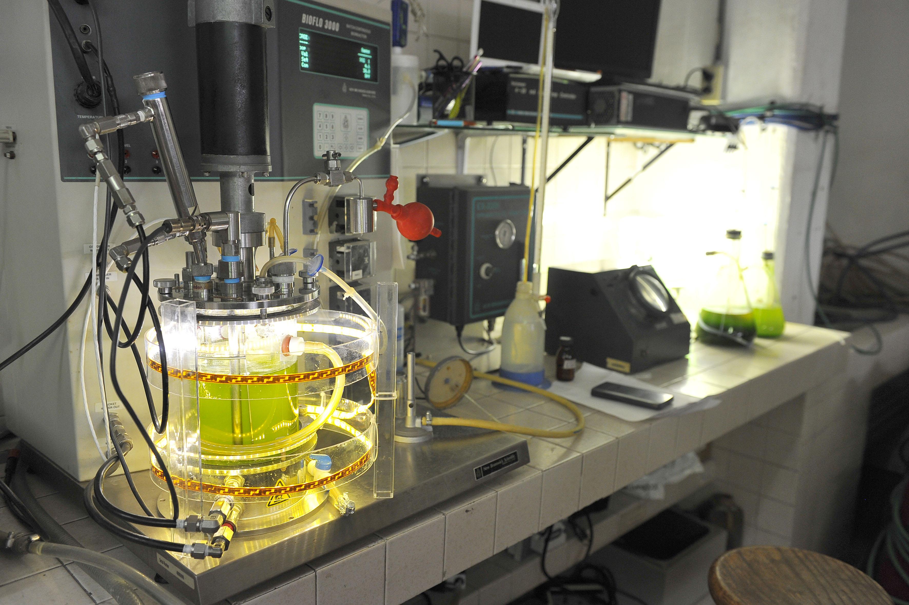 Laboratorio de Biotecnología Ambiental