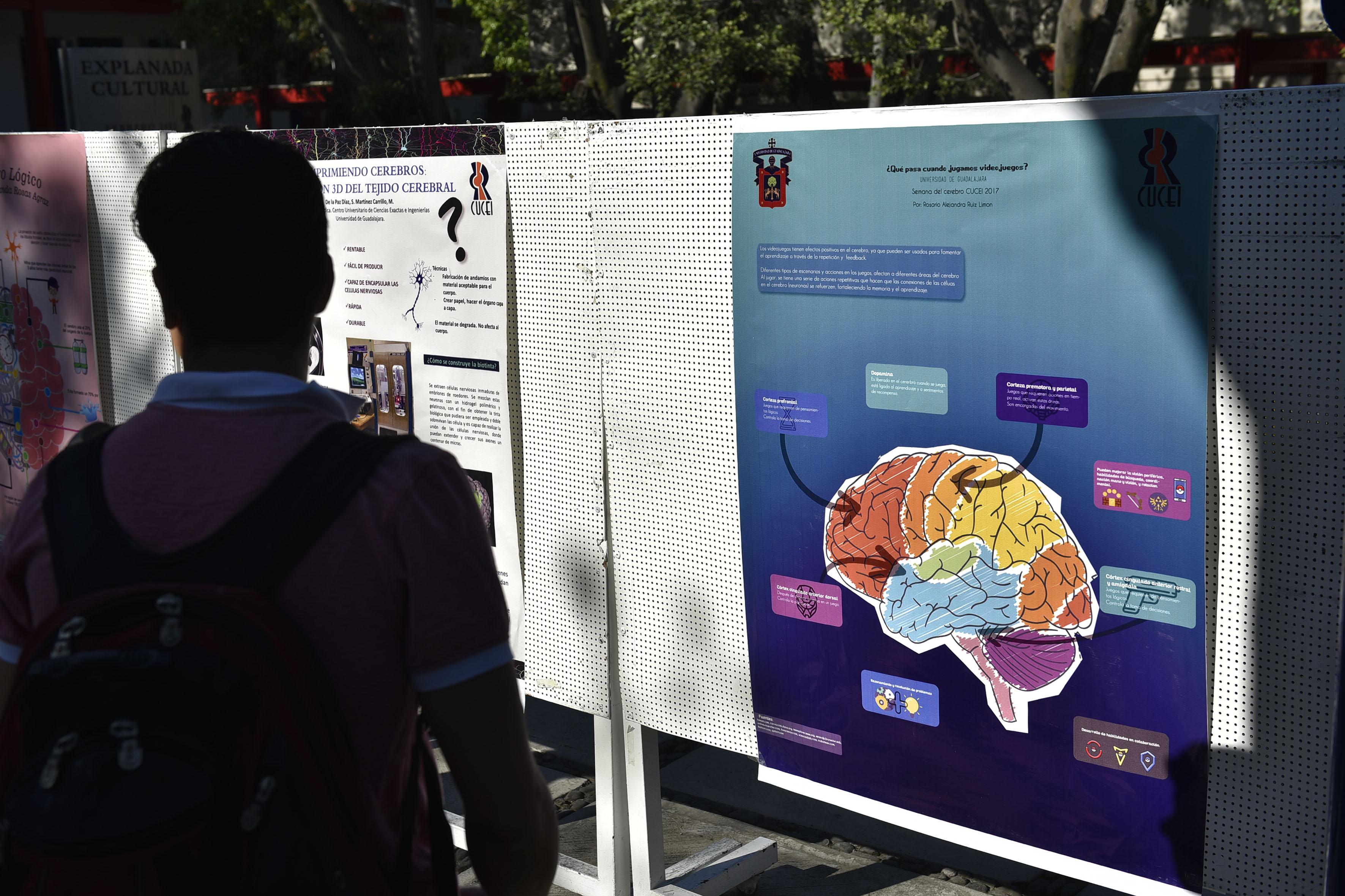 """Carteles de divulgación en alusión a el """"El cerebro y la ingeniería""""."""