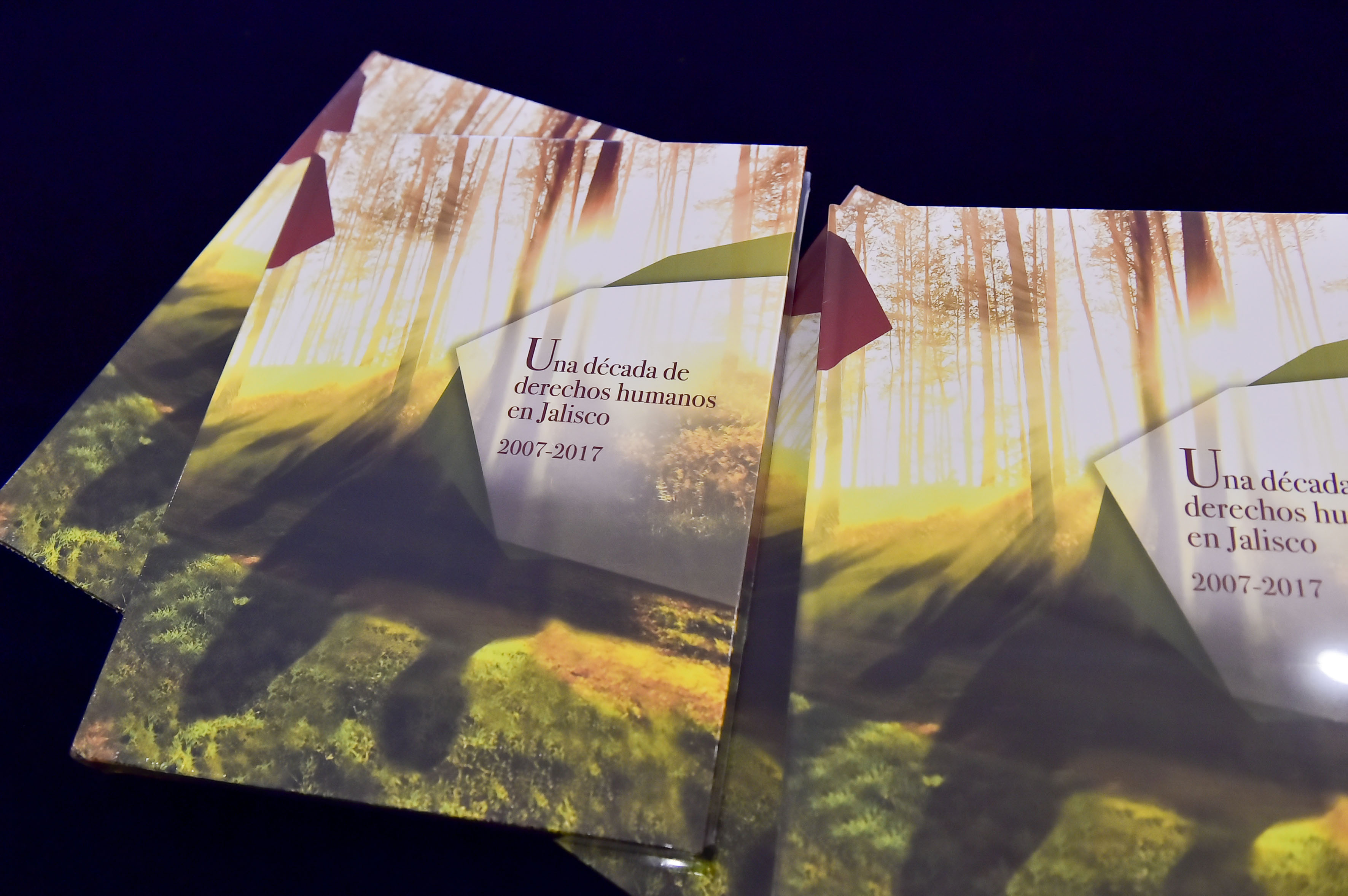 Portada del libro Una década de Derechos Humanos en Jalisco 2007-2017