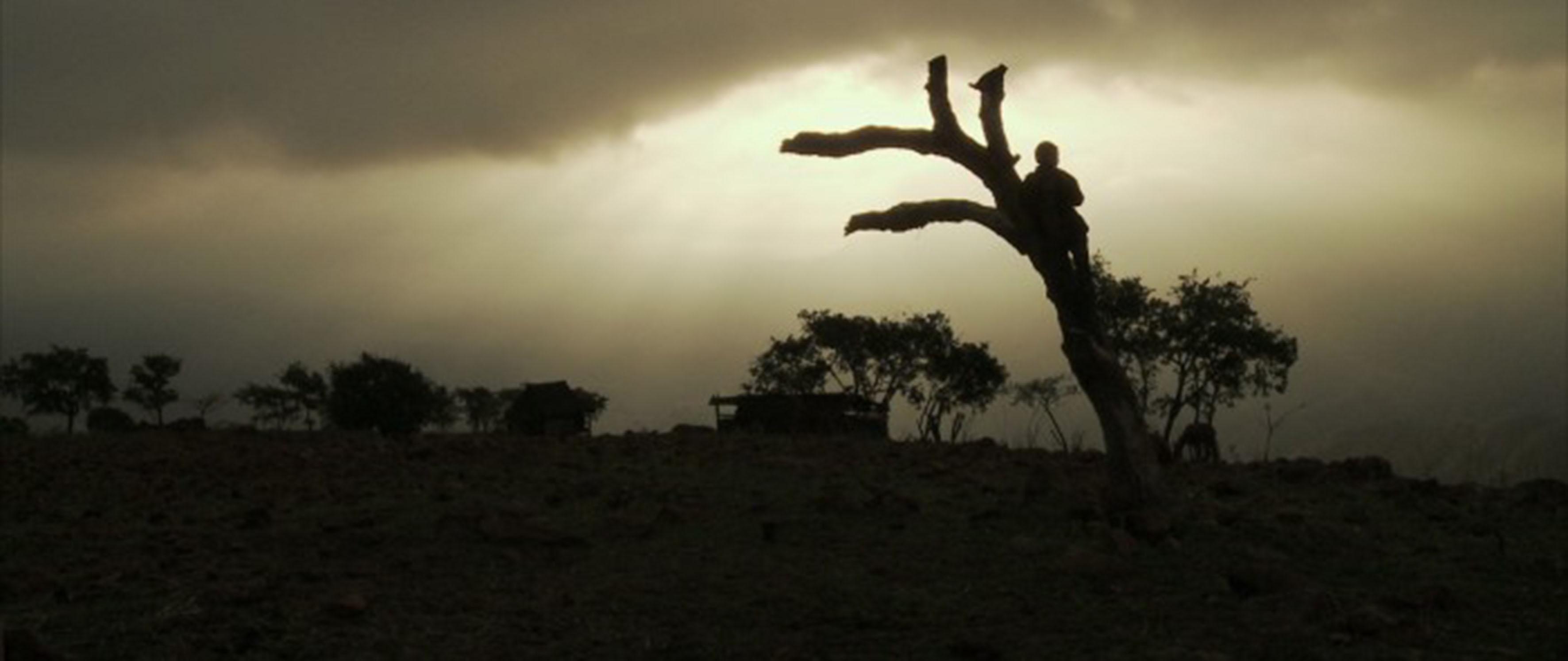 Vista panorámica de una de las regiones de Jalisco, en donde se observa una zona árida en donde hay una pequeña choza y corral de animales, mientras un niño está arriba de un árbol seco, parado, viendo hacia el horizante durante un anochecer.
