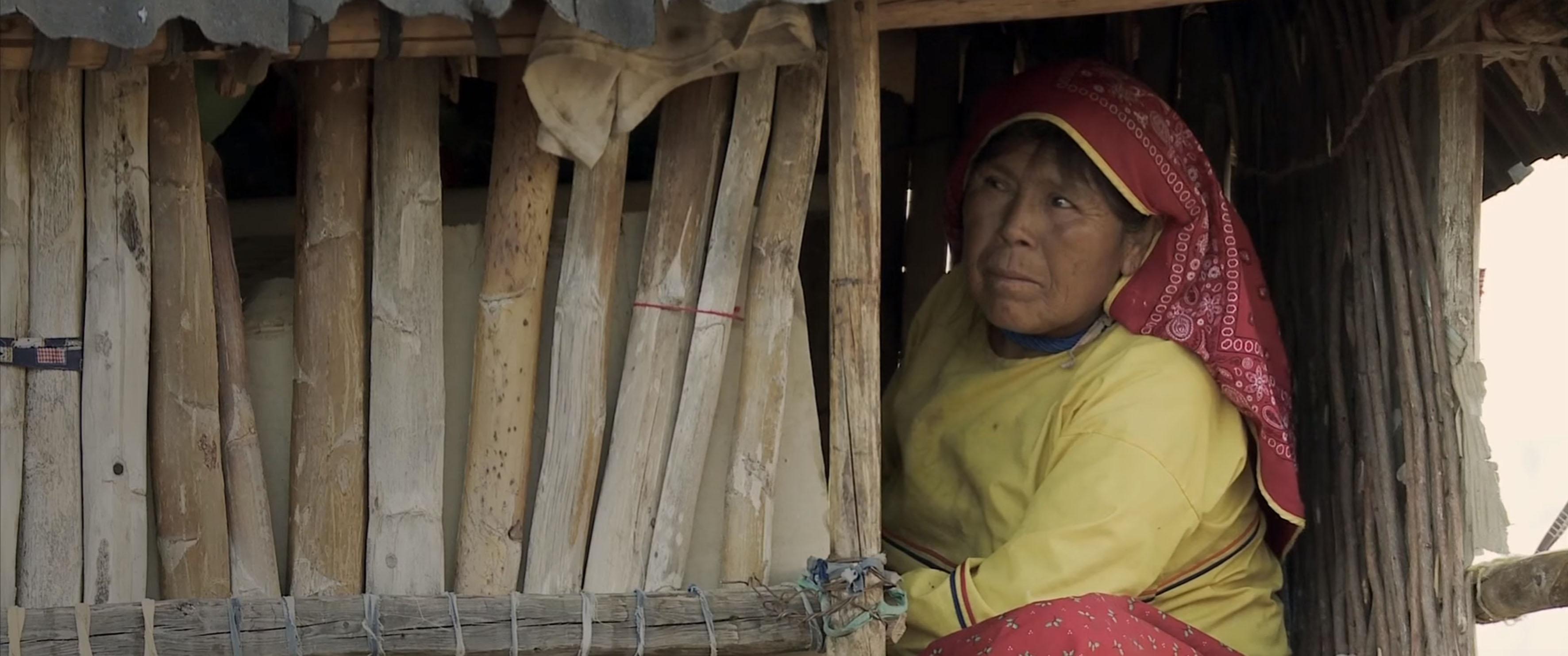 Mujer Wixárica dentro de una pequeña choza hecha de pequeños troncos de árbol de madera y cartón, mientras observa hacia el exterior.