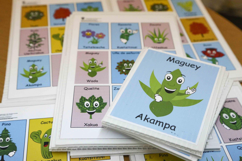 Lotería en lengua wixárika, con ilustraciones dirigidas al público infantil