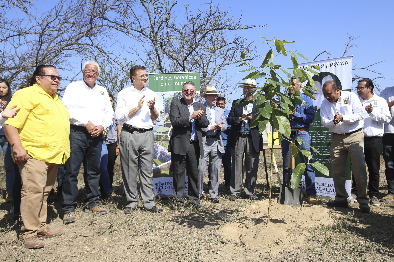 Rector General de la UdeG, maestro Itzcóatl Tonatiuh Bravo Padilla, en compañía de autoridades del centro universitario, de la institución y de gobierno, aplaudiendo al final de la colocación de la primera planta en el Parque Botánico de la UdeG.
