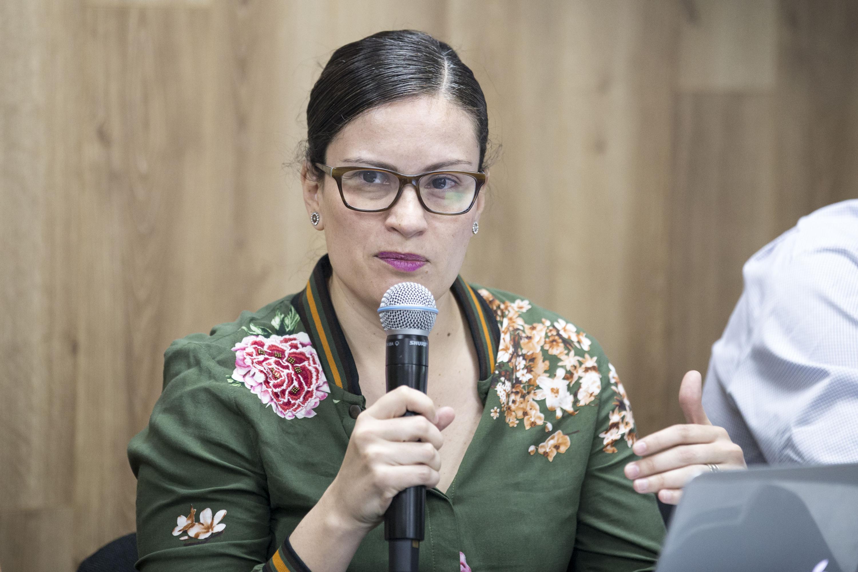 Doctora Fabiola Alcalá, investigadora del Departamento de Comunicación Social, participando en rueda de prensa