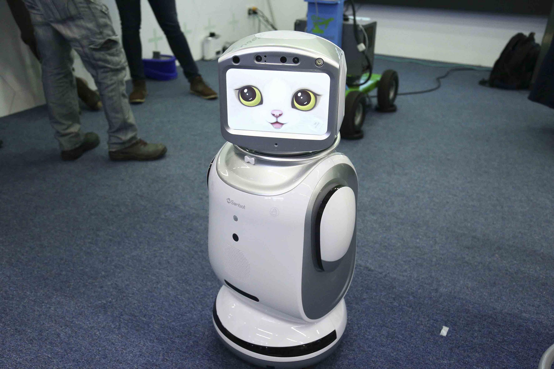 Prototipo de robot interactivo con pantalla de una cara de gato amigable.