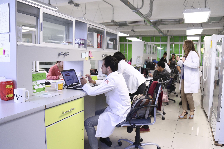 Equipo de investigadores trabajando.