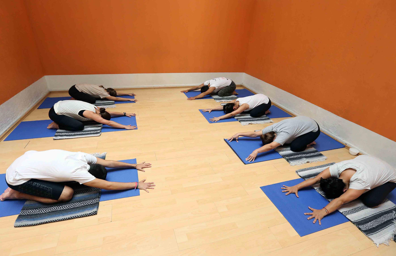 UdeG es pionera en profesionalización de Hatha yoga | Universidad de ...