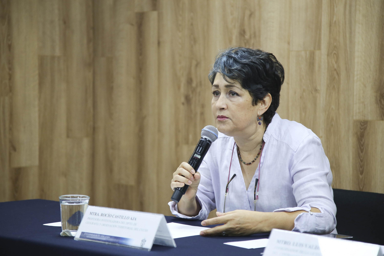 Maestra Rocío Castillo Aja, profesora-investigadora del Departamento de Geografía y Ordenación Territorial, participando en rueda de prensa