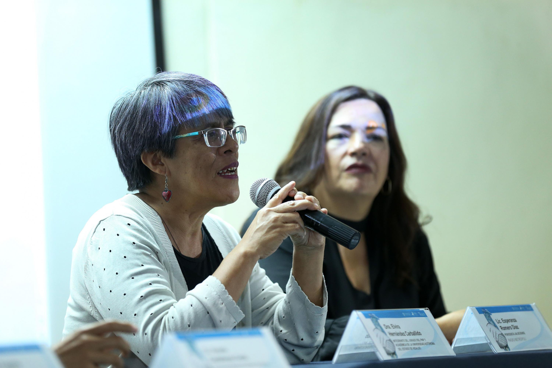Doctora Elvira Hernández Carballido, académica de la Universidad Autónoma del Estado de Hidalgo (UAEH), presentando su libro.