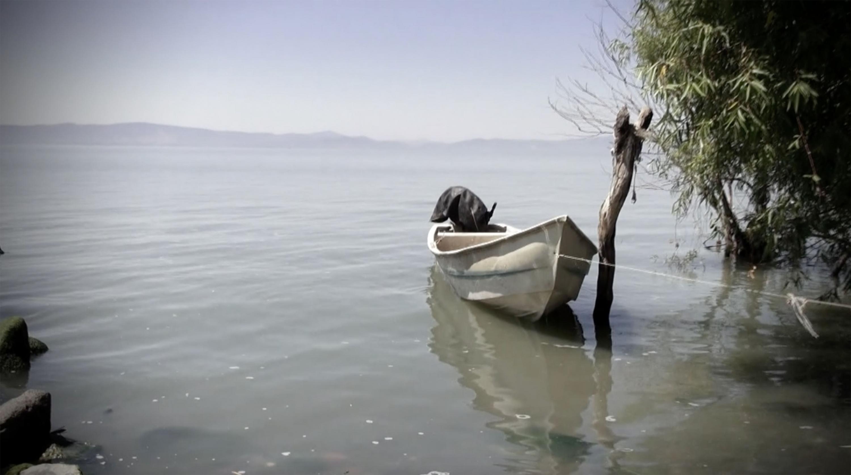 Una lancha amarrada un poste en la ribera de Chapala