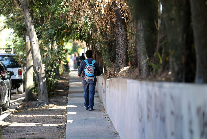 un alumno de espaldas camina por la calle