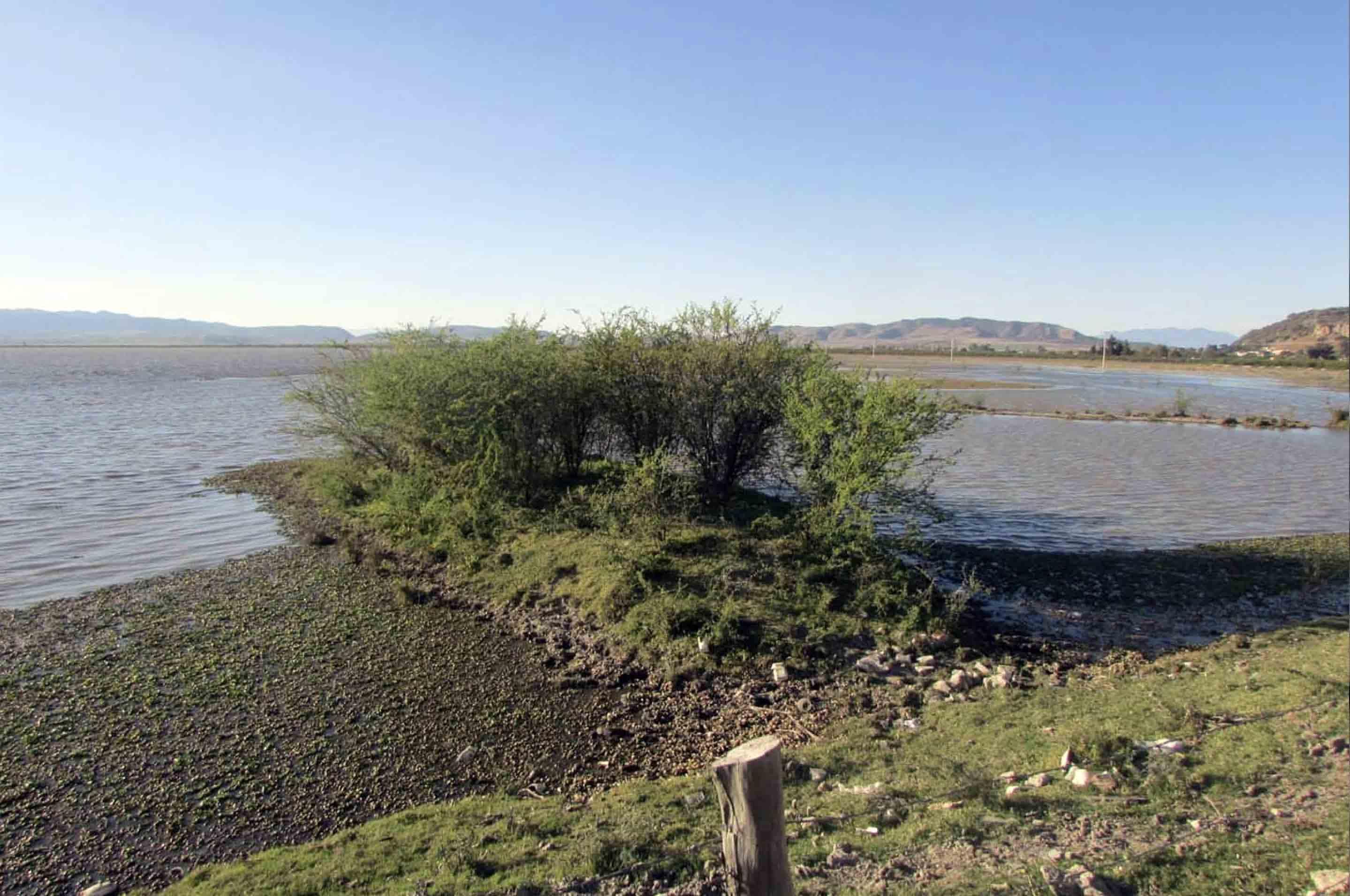 Vista panorámica de la ribera de la exlaguna de Magdalena.