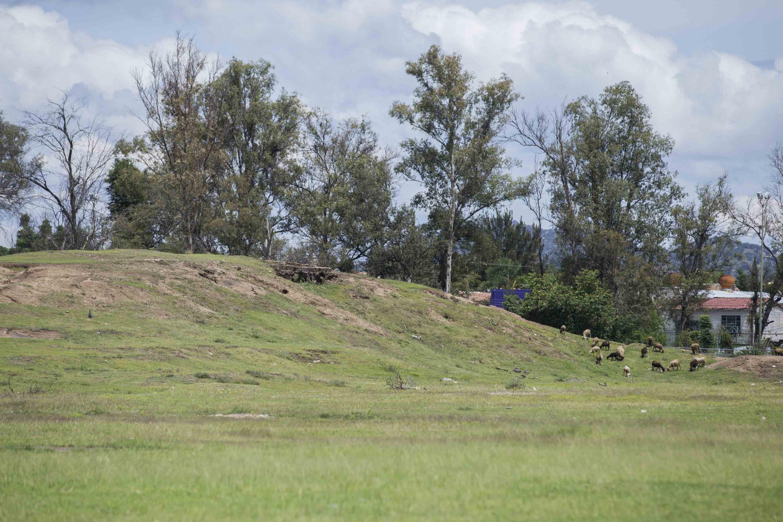 """Montículos de la zona arqueológica """"El Grillo"""", en el municipio de Zapopan"""