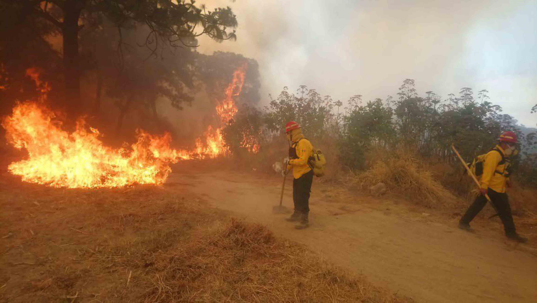 Brigadistas combatiendo el incendio forestal, en el Bosque de la Primavera
