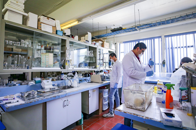 Laboratorio del Centro Universitario de Ciencias de la Salud (CUCS)
