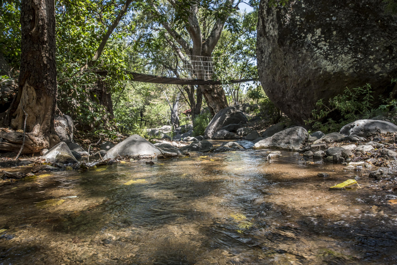 """Prestigiosa revista """"Nature"""" retoma el trabajo realizado por UdeG y otras organizaciones en esta zona para la conservación del agua"""