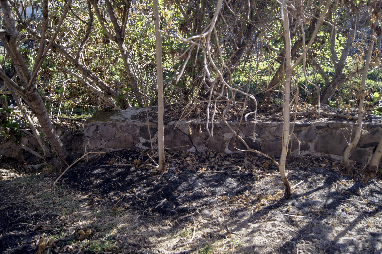 Crearán el Parque Laboratorio CUCSH Cañada Enrique Estrada Faudón para investigaciones y mejora ambiental de la zona