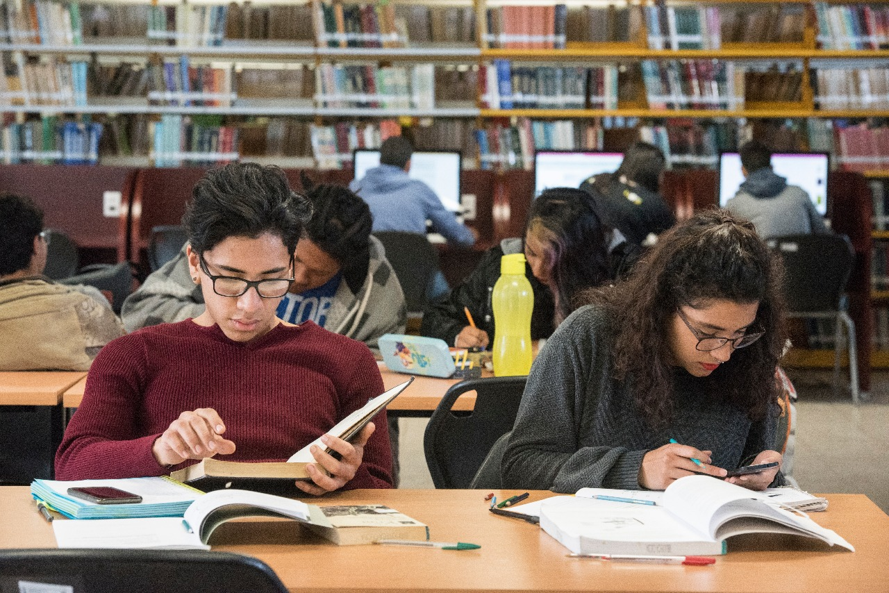 Jovenes estudiantes realizando tareas en una biblioteca