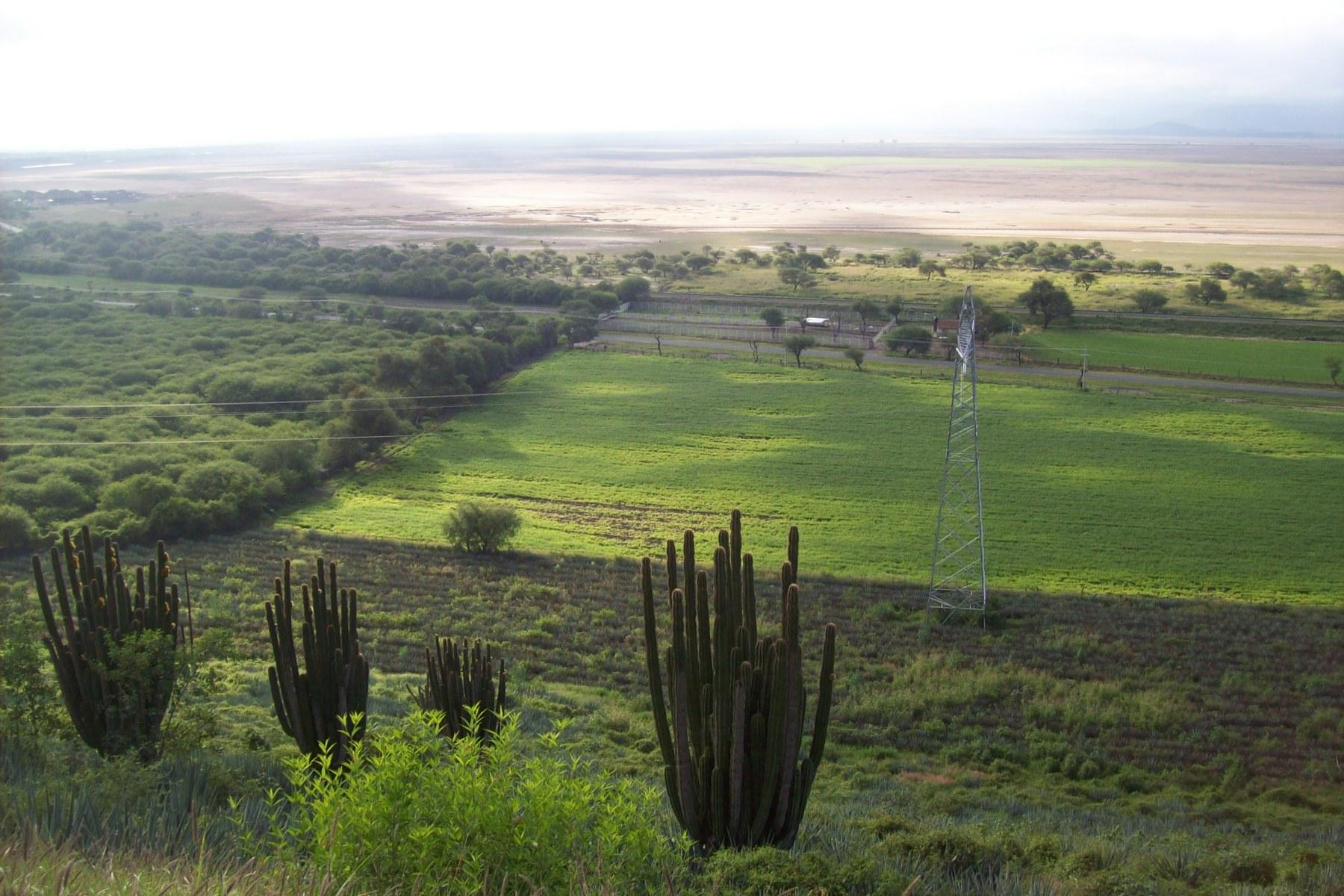 Vista aérea de la cuenca Zacoalco-Sayula