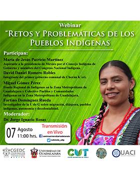 Webinar: Retos y problemáticas de los pueblos indígenas