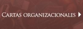 Cartas Organizacionales