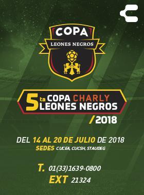 Cartel informativo sobre la 5ta. Copa Charly Leones Negros 2018
