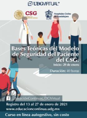 Bases teóricas del Modelo de seguridad de paciente