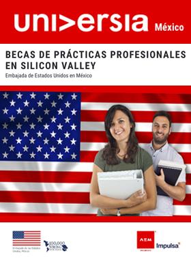 Becas de prácticas profesionales en Silicon Valley