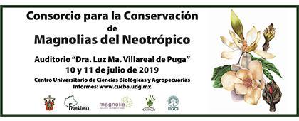 Cartel informativo del Consorcio para la Conservación de Magnolias del Neotrópico y Taller de Horticultura de Conservación para Magnolias: a llevarse a cabo del 8 al 14 de julio de 2019.