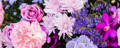 Identidad gráfica del Diplomado en Creación y Desarrollo de Empresas para Flor de Corte (Floricultura). A llevarse a cabo el 17 de agosto, en el Departamento de Ingeniería de Proyectos de la División de Ingenierías del CUCEI