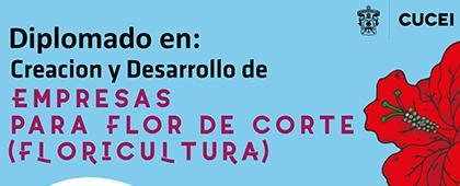Cartel informativo sobre el Diplomado en Creación y Desarrollo de Empresas para Flor de Corte (Floricultura)