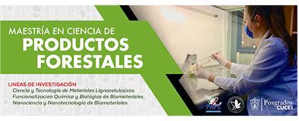 Cartel informativo sobre la Maestría en Ciencia de Productos Forestales. Proceso de selección 2019B