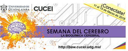"""Cartel informativo sobre la  Semana Internacional del Cerebro 2019 """"La bioquímica cerebral"""", del 11 al 15 de marzo"""